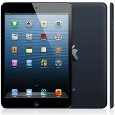 iPad mini Wi-Fi 16GB (Black)